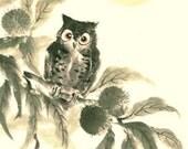 Japanese Tenugui Fabric, Kawaii Owl Pattern, Chestnut Tree, Bird Fabric, Autumn, Hand Dyed Fabric, Wall Art Hanging, Gift Idea, Scarf, h474