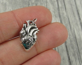 Anatomical Heart Charm - Sterling Silver Anatomical Heart Charm for Necklace or Bracelet