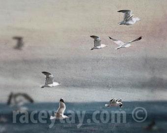 Ocean Photography, Blue, Gray, Beach Decor, Flying Birds, Malibu, California Print, Gray Blue Ocean Waves