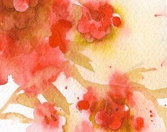 Rowan Berries I