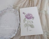 ORIGINAL WASHED ROSES Watercolour Painting 6 x 9 Botanicals  Seawashed Shabby Chic French Nordic Jeanne d Arc Living Bohemian Summer Style