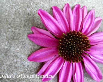 Realistic Echinacea hair flower, Purple coneflower hair clip