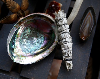 2 Piece Smudging Kit - Single White Sage Smudge Stick or Bag of Loose Sage Leaves & Large Abalone Shell