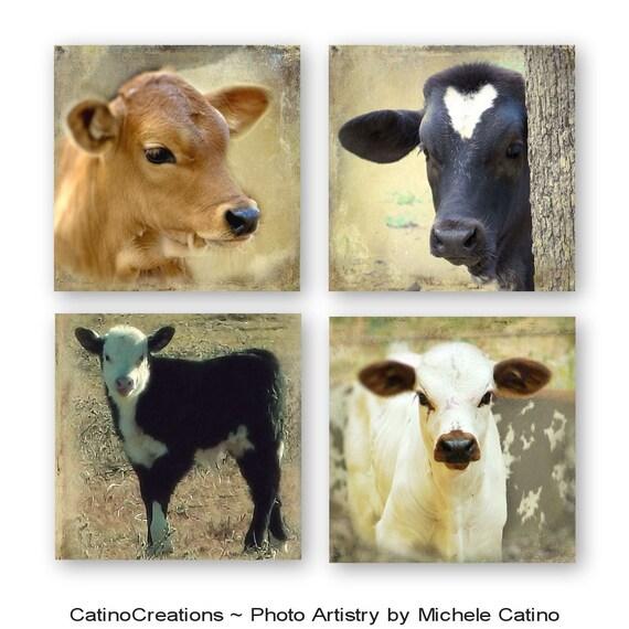Cow Nursery Decor Photo Set Baby Calf Vintage Cow Theme