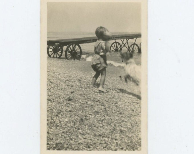 Fetch, c1910s Small Vintage Snapshot Photo[65458]