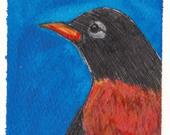 "american robin bird unframed painting 4x6"" original a2n2koon on watercolor paper art navy blue coral orange red illustration art in sleeve"
