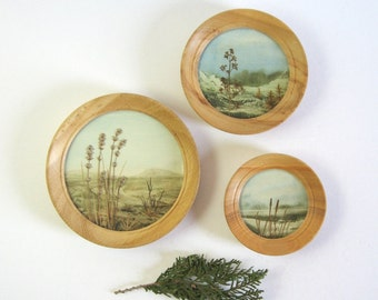 Set of 3 Vintage Framed Botanical Collage Art - Watercolor Painting - Landscape Painting Round Wood Frame - Nature Wall Decor Landscape Art