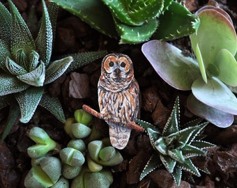 Wooden Tawny Owl Brooch - Hand Drawn Design.