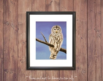 Barred Owl Print from Original Oil Painting, 4x5, 8x10