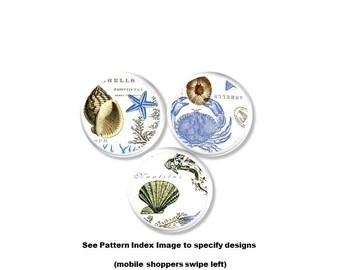 Seashell Drawer Pull - Coastal Knob, Beach House, Crab, Conch Shell, Star Fish, Clam, Blue, White, Bathroom Cabinet, Bath, Handles - 215B17