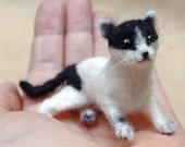 Needle felted cat, flexible kitten miniature, natural imitation, cat portrait, custom order, felted pet, dollhouse decoration, 1/10 scale