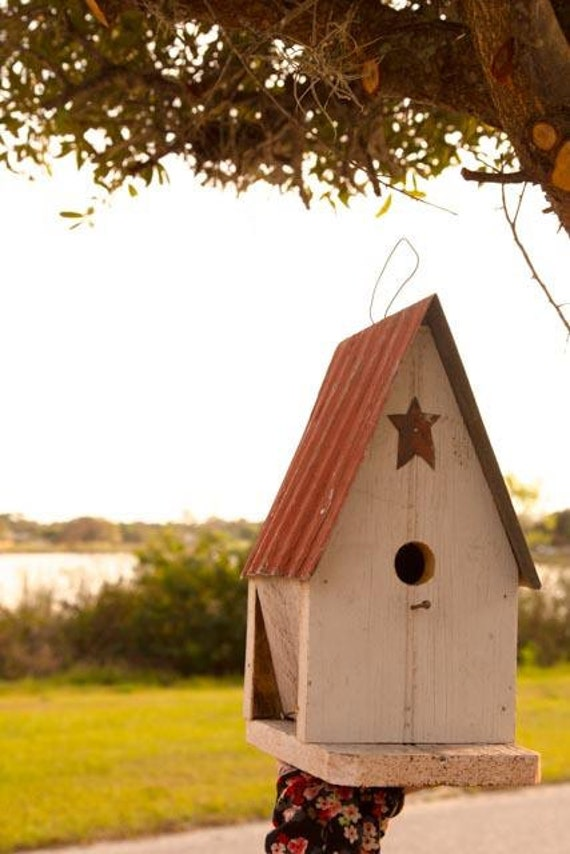 Amish Duck Houses : Amish handcrafted garden bird house