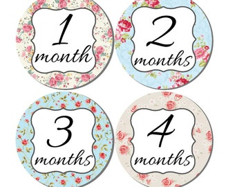 Baby Month Stickers- Milestone Sticker- Baby Girl Month Stickers- Monthly Stickers- 12 month stickers- Milestone Baby Month Stickers- G52