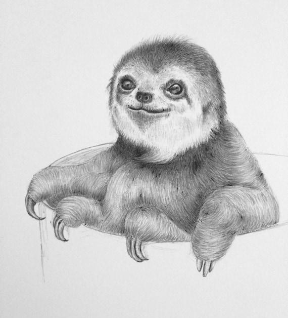 Custom Animal or Pet Drawing