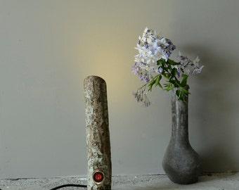 Modern Lighting, Lamp, Table Lamp, Desk Lamp, Wooden table lamp, Gift for home, Stylish Lamp, Birthday gift for man or woman, Hazelnut log