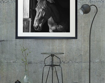 Horse art/black and white photography/horse Photography equestrian fine art/horse tack, horse wall decor, personalized home decor, Horse art