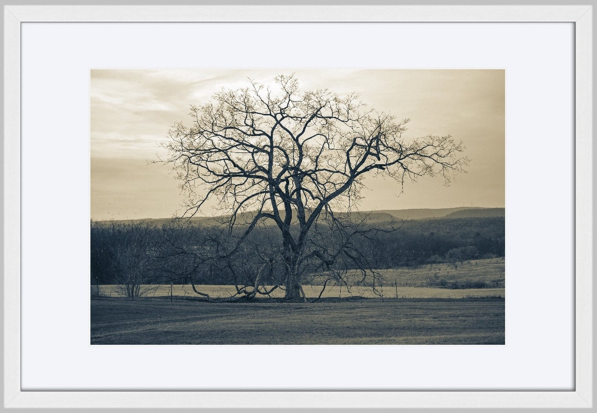 Landscape Photography Large Wall Art Print Nature