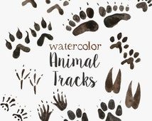 Watercolor Animal Tracks, Dog footprints, Nature Clip Art, Explorer Clipart, Natural Footprints Clipart, Animal Track Illustrations