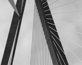 RAVENEL BRIDGE CHARLESTON detail black and white b&w