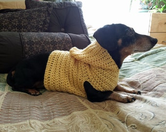 Hooded Dog Dachshund Pull Over Sweater Crochet Pattern Instructions PDF