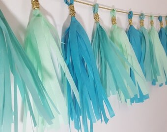 Blue Ombre Wild One Party Decor Fringe Tassel Garland Banner