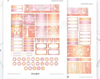 June Month View Printable Planner Stickers for the Classic MAMBI Happy Planner