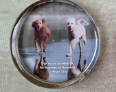Custom Pet Photo Paperweight, Your Pet's Photo Displayed in a Handcrafted Glass Paperweight, Personalized Gift, Home Decor, Custom Gift