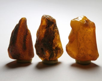 L16 - 3 pieces of amber crude natural NON pierced