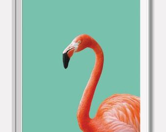 Flamingo, Animal, Bird, Kids room,Modern art, Wall decor, Digital art, Printable, Digital poster Instant, Flamingo print, Flamingo pop art