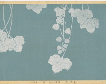 "1931, Japanese antique woodblock print, Honami Koetsu, ""Album of Hundred Flowers by Artists of Rinpa School, Japanese Ivy"""