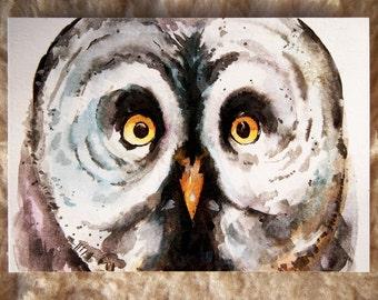no 5. Owl large print