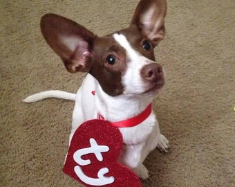 "Handmade ""Ty"" Sparkle Beanie Baby Inspired Pet CostumeTag and Tie-Around Ribbon, Fur baby costume, Size Small!"