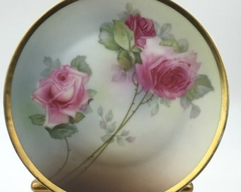 Spectacular Bavaria Zeh Scherzer Royal Munich Hand Painted Rose Plate