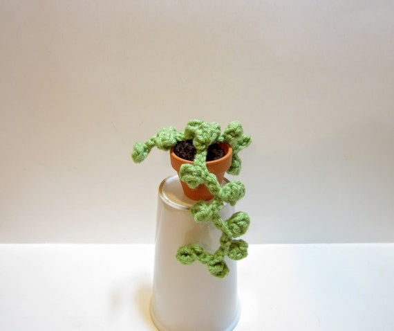 String Of Pearls Cactus Small Crochet Plant By Madebyjody666