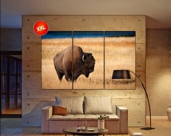 Bison wall art print prints on canvas Bison during Fall photo art work framed art artwork