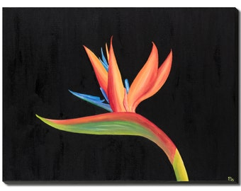 """Bird of Paradise Collection - 12"""" x 16"""" (30 x 40 cm), Oil on Canvas"""