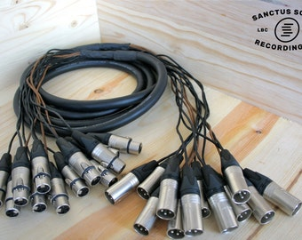 12 Channel Audio Snake with Mogami 2933 wire, Neutrik Silver Connectors
