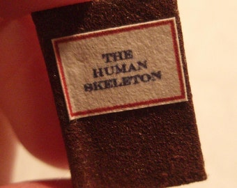 The Human Skeleton - readable 12th scale miniature book