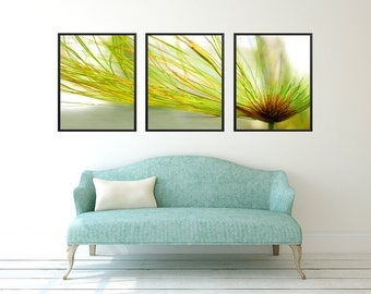 Printable 3 piece wall art, payruses triptych photography, printable flower photograph, diy printing, three piece flower art, print at home