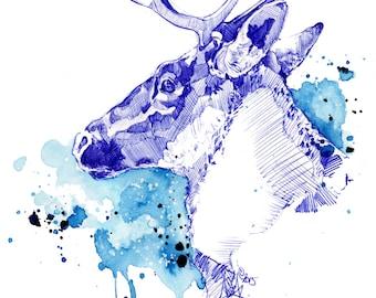 Bleu Boréal - Illustration (Print) | Caribou | Deer | Antler | Aquarelle | Drawing | Dessin | Watercolor | Animal Illustration |  Art Deco