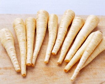 "Parsnip ""All American"" ( select 100=>25,000 seeds) bulk non gmo heirloom #298"