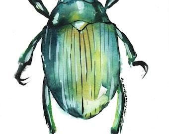 Green Beetle Art PRINT of original watercolor painting