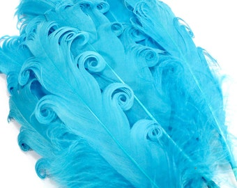 Light Blue Curled Goose Feathers. (5) Sky Blue Bird Feathers for Pads, Hats, Crafts. Curly End Feather Hair Accessories. Earring Feathers.