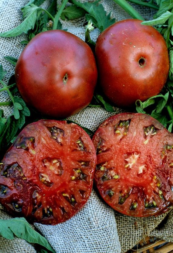 heirloom tomato black krim 69 day dark red indeterminate 25. Black Bedroom Furniture Sets. Home Design Ideas