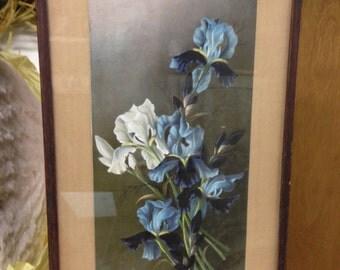 Framed Henri LeRoy Print Irises