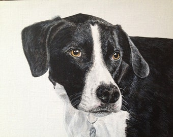 Pet Portraits on canvas Commissioned