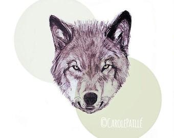 Wolf • Art Print on paper