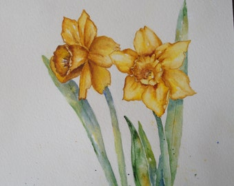Daffodils, watercolor print, spring flowers