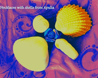 Logo of my shop: necklaces with shells from Apulia
