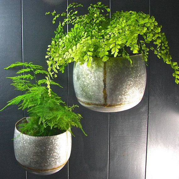 Set of 2 Galvanised Steel Wall Planters LTZKR002